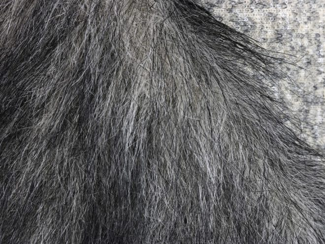 Мех искусственный #019